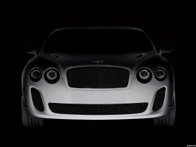Ver foto 34 de Bentley Continental-GT Supersports 2009