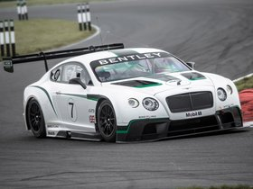Ver foto 11 de Bentley Continental GT3 2013