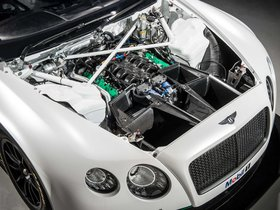 Ver foto 9 de Bentley Continental GT3 2013