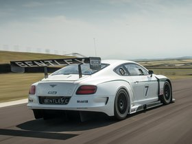 Ver foto 6 de Bentley Continental GT3 2013