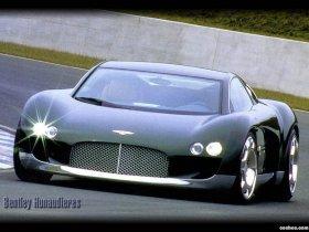 Ver foto 2 de Bentley Hunaudieres Concept 1999