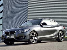 Ver foto 10 de BMW Serie 2 Coupe Sport Line F22 2014