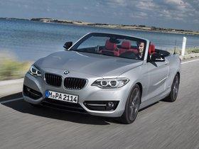 Ver foto 12 de BMW Serie 2 228i Cabrio Sport Line F23 2015
