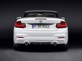Ver foto 2 de BMW Serie 2 Cabrio M Performance Accessories F23 2015