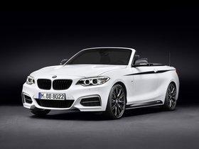 Ver foto 1 de BMW Serie 2 Cabrio M Performance Accessories F23 2015