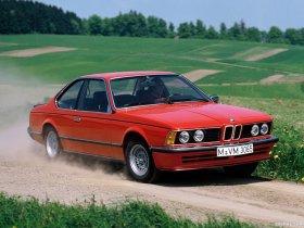 Ver foto 10 de BMW Serie 6 635csi E24 1978