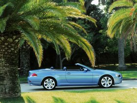 Ver foto 15 de BMW Serie 6 Cabrio 2003