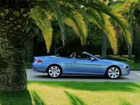 Ver foto 4 de BMW Serie 6 Cabrio 2003