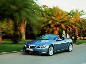 Ver foto 29 de BMW Serie 6 Cabrio 2003