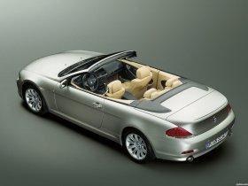 Ver foto 23 de BMW Serie 6 Cabrio 2003
