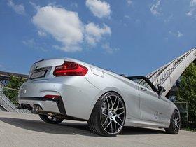 Ver foto 3 de BMW M235i Cabriolet by Dahler 2015
