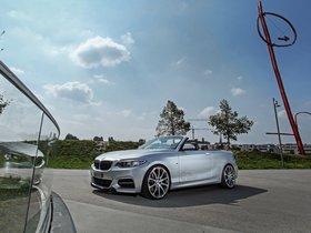 Ver foto 10 de BMW M235i Cabriolet by Dahler 2015