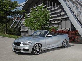 Ver foto 9 de BMW M235i Cabriolet by Dahler 2015