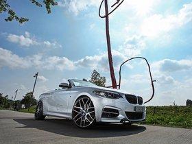 Ver foto 8 de BMW M235i Cabriolet by Dahler 2015