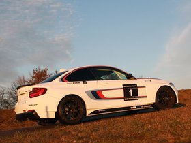 Ver foto 2 de BMW Serie 2 M235i Racing F22 2014