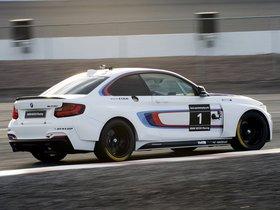Ver foto 18 de BMW Serie 2 M235i Racing F22 2014