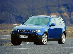 Ver foto 35 de BMW X3 E83 2003