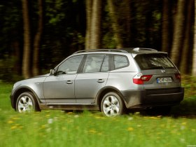 Ver foto 13 de BMW X3 E83 2003