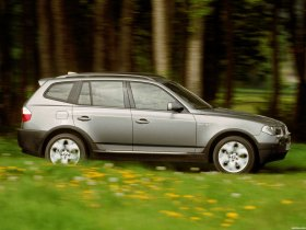 Ver foto 12 de BMW X3 E83 2003
