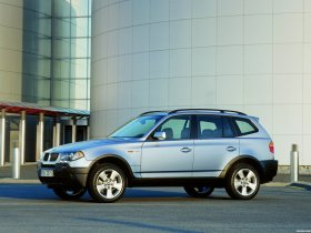 Ver foto 28 de BMW X3 E83 2003