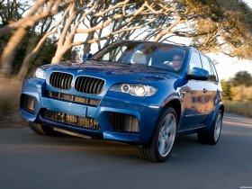 Ver foto 8 de BMW X5 M 2009