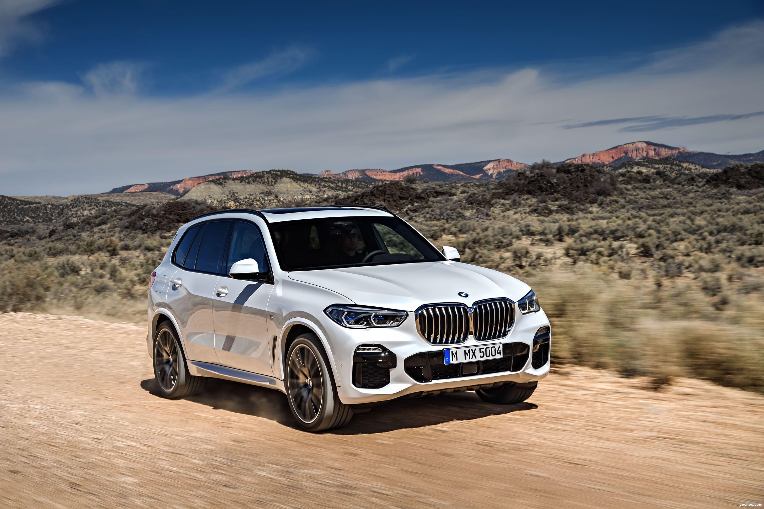 Foto 12 de BMW X5 xDrive 30d 2018