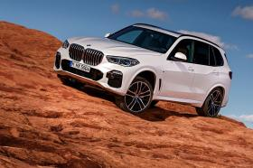 Ver foto 46 de BMW X5 xDrive 30d 2018