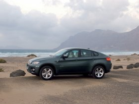 Ver foto 16 de BMW X6 2008