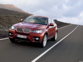 Ver foto 14 de BMW X6 2008