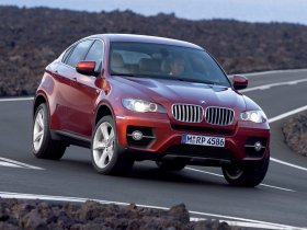Ver foto 33 de BMW X6 2008