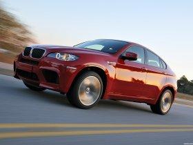 Ver foto 21 de BMW X6 M 2009