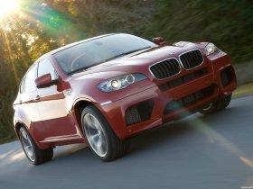 Ver foto 34 de BMW X6 M 2009