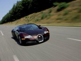 Ver foto 3 de Bugatti Veyron 2005