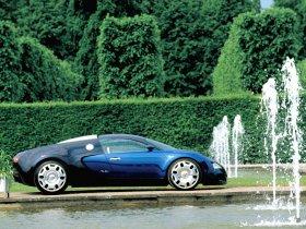 Ver foto 3 de Bugatti Veyron Concept 2004