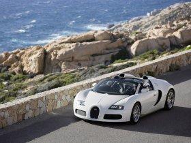 Ver foto 16 de Bugatti Veyron Grand Sport 2009
