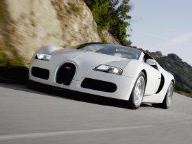 Ver foto 12 de Bugatti Veyron Grand Sport 2009