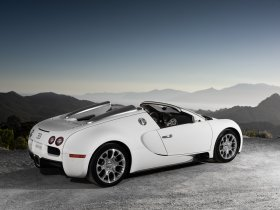 Ver foto 21 de Bugatti Veyron Grand Sport 2009
