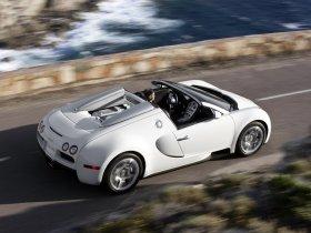 Ver foto 20 de Bugatti Veyron Grand Sport 2009
