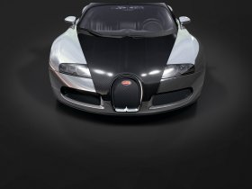 Ver foto 3 de Bugatti Veyron Pur Sang 2007