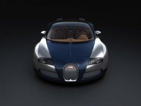 Ver foto 3 de Bugatti Veyron Sang Bleu Grand Sport 2009