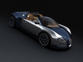 Ver foto 1 de Bugatti Veyron Sang Bleu Grand Sport 2009