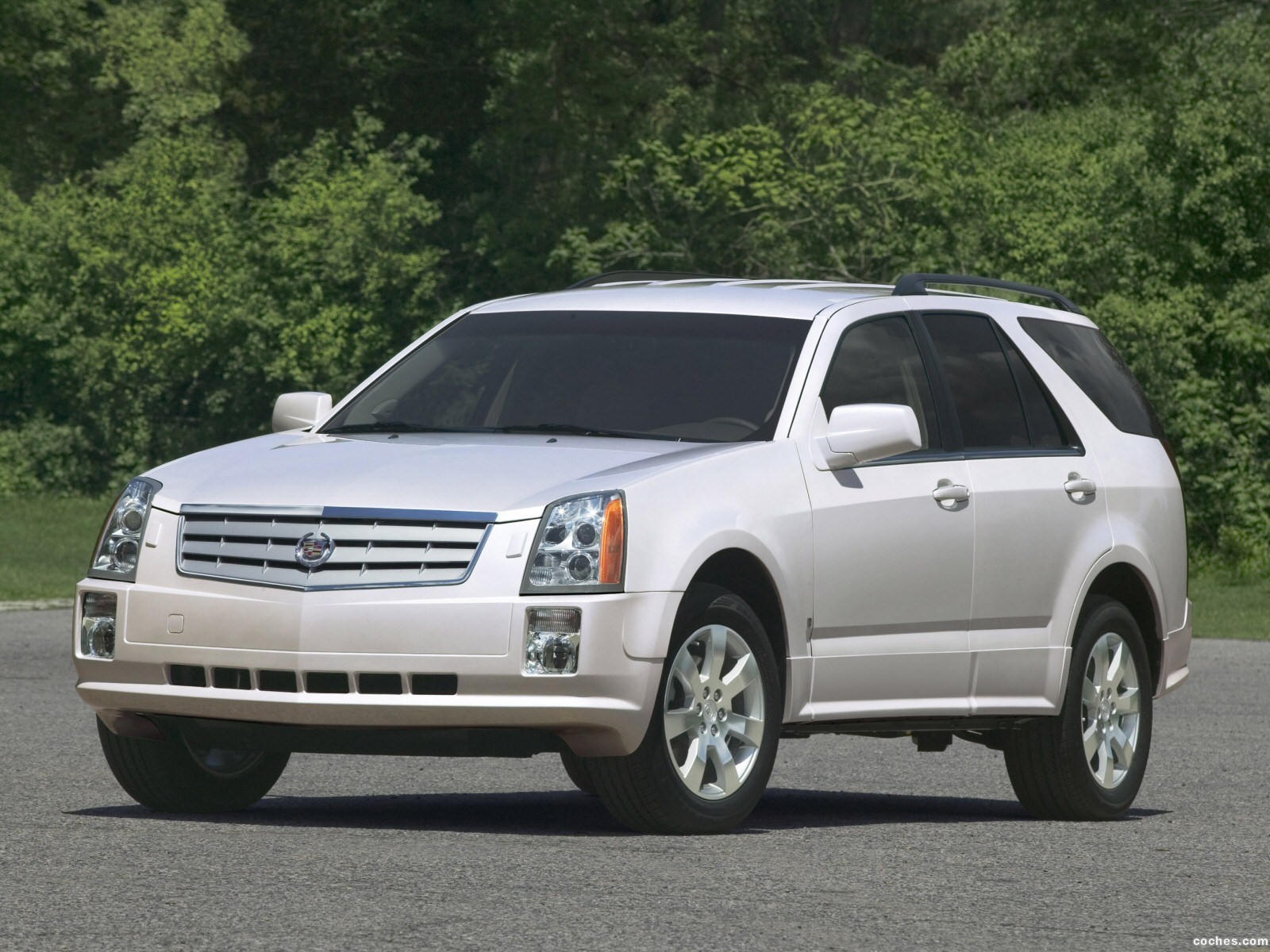 Foto 0 de Cadillac SRX 2004