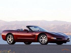 Ver foto 5 de Chevrolet Corvette Anniversary Edition 2003
