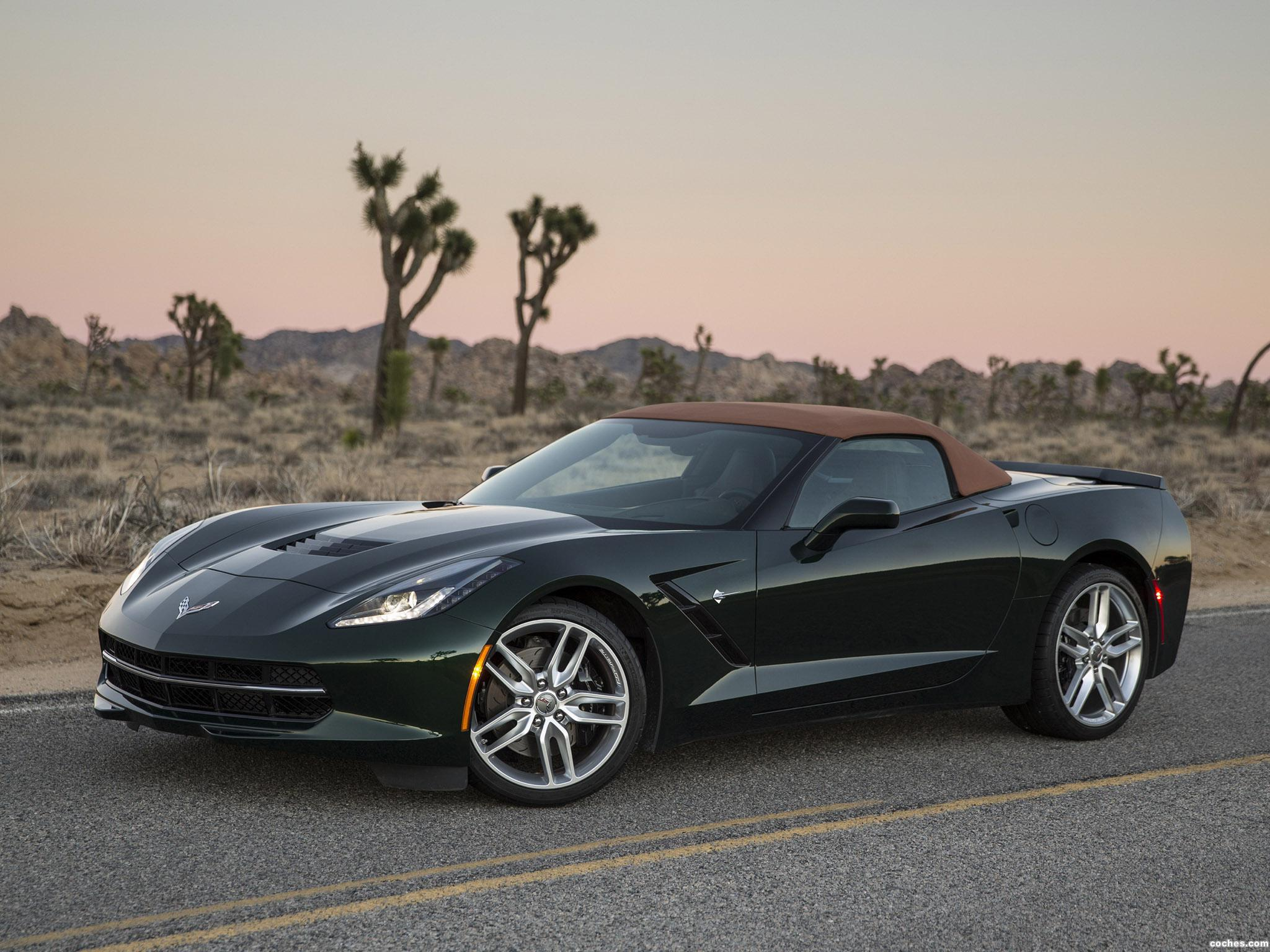 Foto 9 de Chevrolet Corvette Stingray Convertible C7 2013