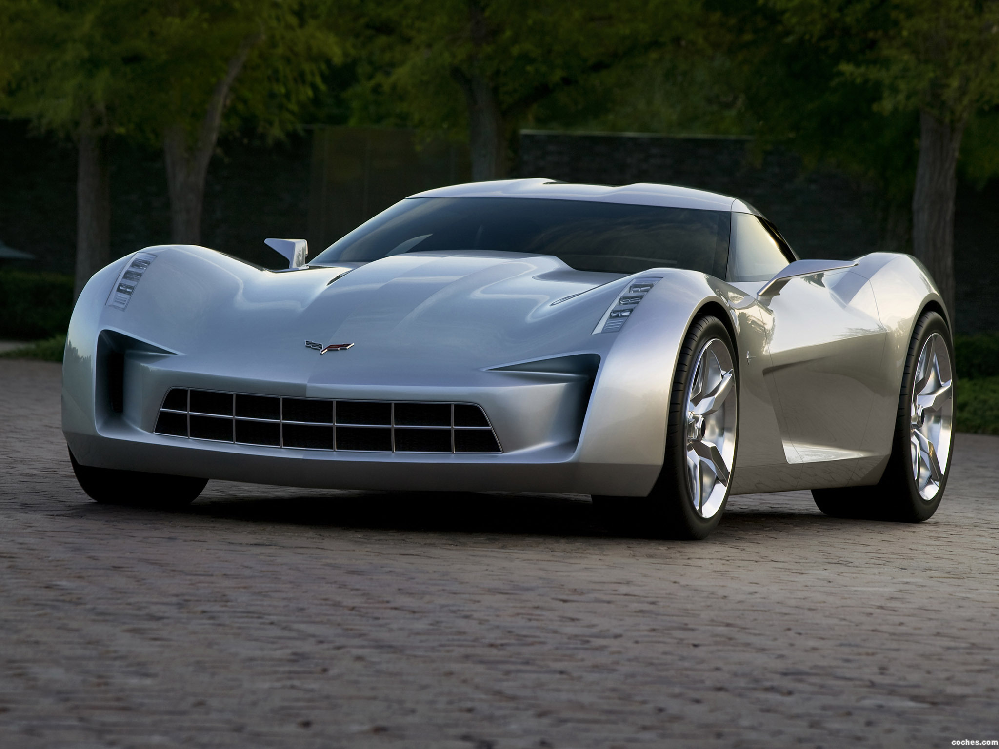 Foto 0 de Chevrolet Stingray Concept 2009