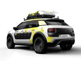 Ver foto 2 de Citroen C4 Cactus Aventure Concept 2014