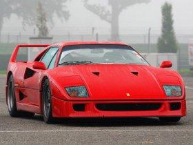 Ver foto 20 de Ferrari F40 1987
