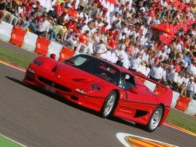 Ver foto 28 de Ferrari F50 1995