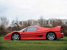 Ver foto 18 de Ferrari F50 1995