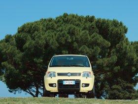 Ver foto 19 de Fiat Panda 4x4 2004